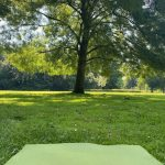 Zen in Nature